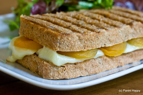 Brie & Dried Apricot Panini