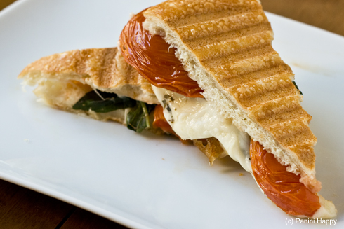 Roasted Tomatoes, Fresh Mozzarella & Basil Panini