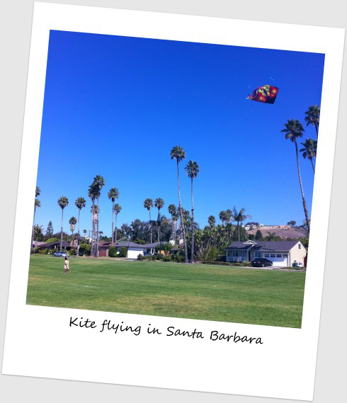 Kite flying in Santa Barbara