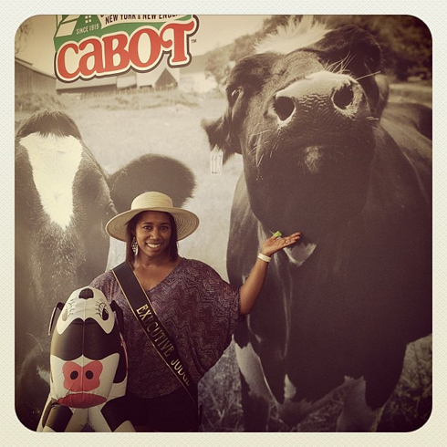 Love those Cabot cows!