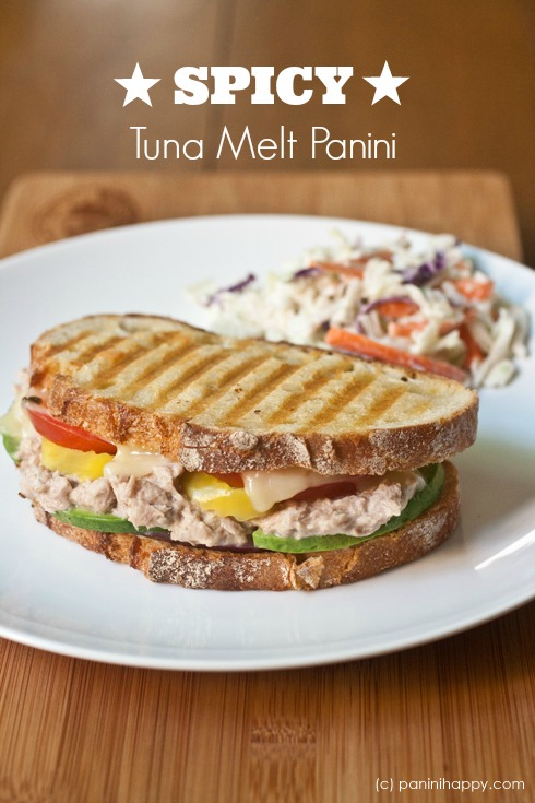 Post image for Spicy Tuna Melt Panini