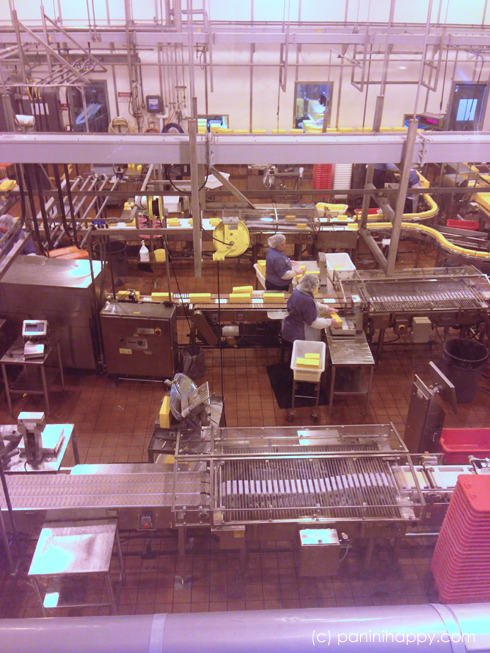 Packaging cheese at the Tillamook factory